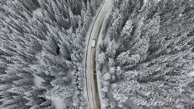 Аэрофотоснимок грузовик вождение по дороге через снежное еловый лес — стоковое фото