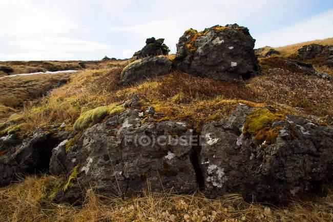 Дикі краєвид в Ісландії — стокове фото