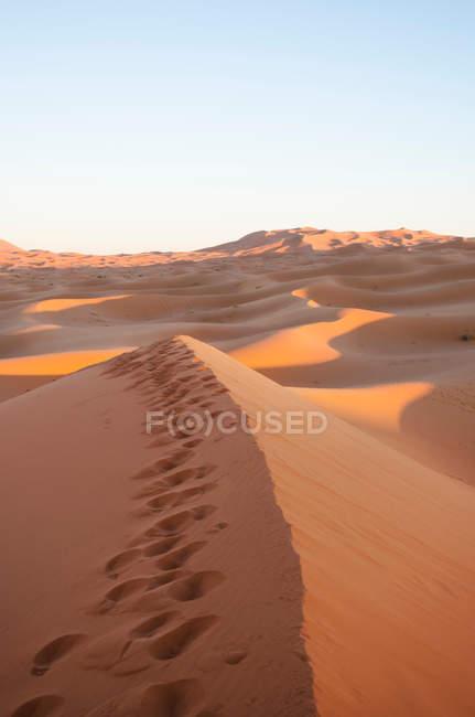 Sunset over dunes of desert — Stock Photo
