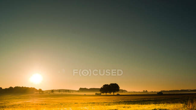 Sunset over meadow landscape — Stock Photo
