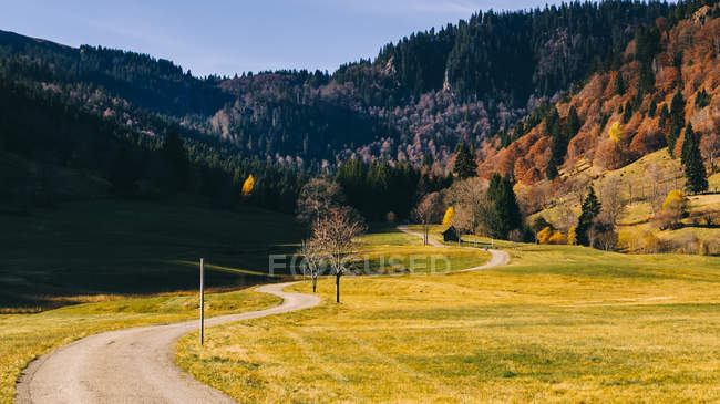 Scenic field ,mountains and autumnal forest — Stock Photo
