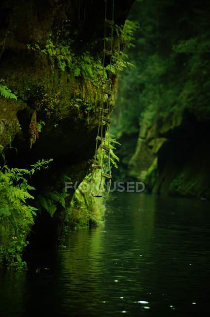 Elbsandsteingebirge — Stockfoto