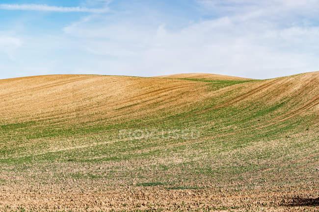 Landschaft mit Agrarbereich — Stockfoto