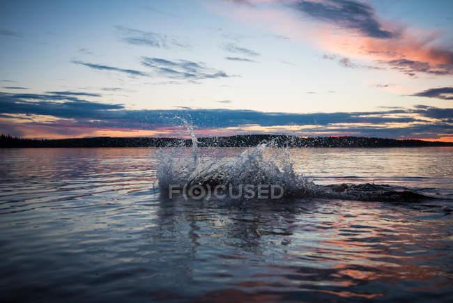 Ligne d'horizon et vue de paysage magnifique — Photo de stock