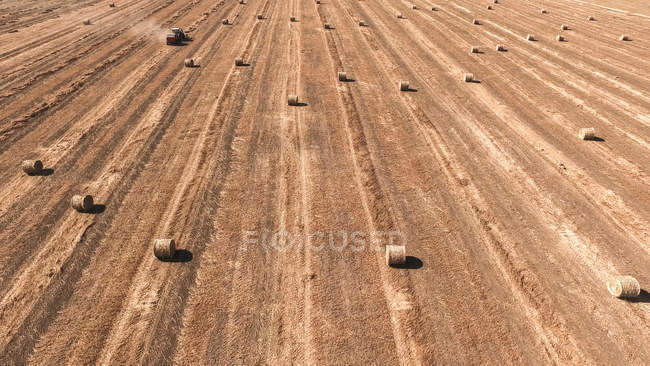 Agricultural field with hay bales — Stock Photo