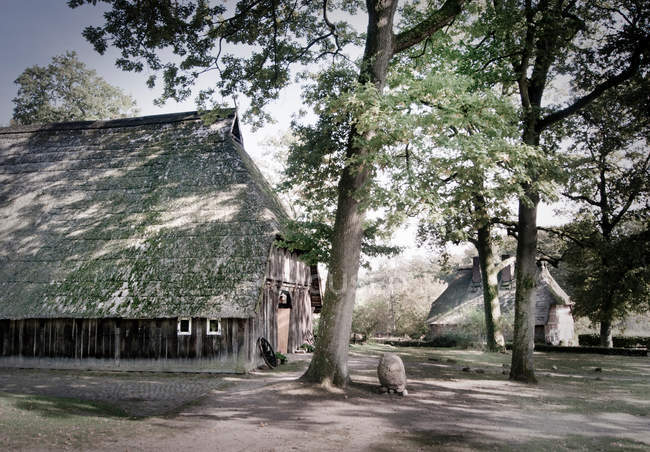 Countryside landmark with farmhouses and trees — Stock Photo