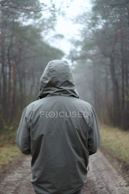 Back view of man in grey jacket with hood standing in autumn forest — Stock Photo