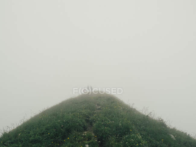 Hill in foggy weather — Stock Photo