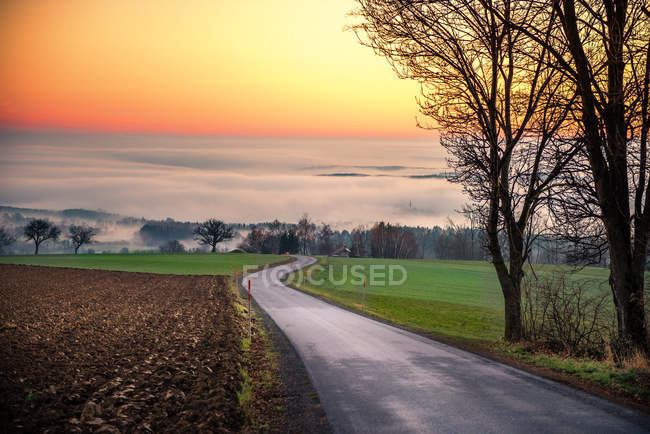 Road through field at sunset — Stock Photo