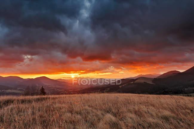 Outono do amanhecer nublado de novembro — Fotografia de Stock