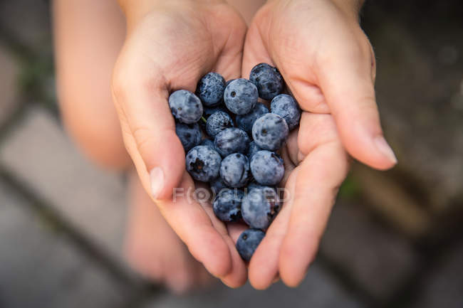 Handful of fresh blueberries — group, background - Stock
