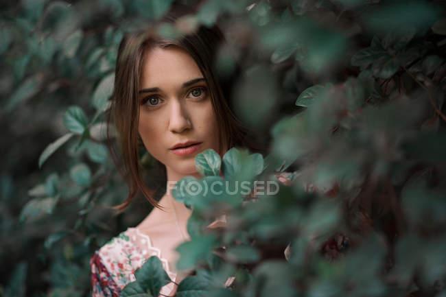 Портрет красивой молодой женщины, скрывается в растениях — стоковое фото
