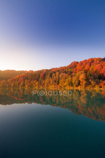 Natural tranquil scene of trees reflecting into lake in autumn — Stock Photo