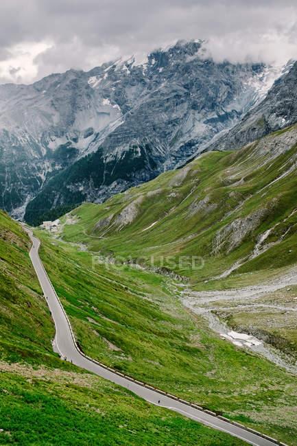 Мальовничим видом на зеленій траві пейзаж у горах Південно-тірольські, Stilfserjoch — стокове фото