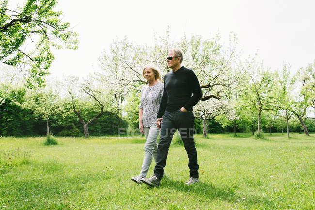 Casal sênior no pomar a andar na grama verde — Fotografia de Stock