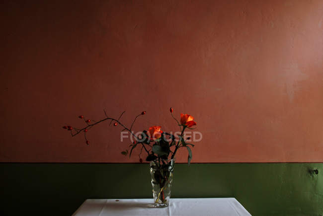 Red flowers in vase on table against red wall in room — Stock Photo