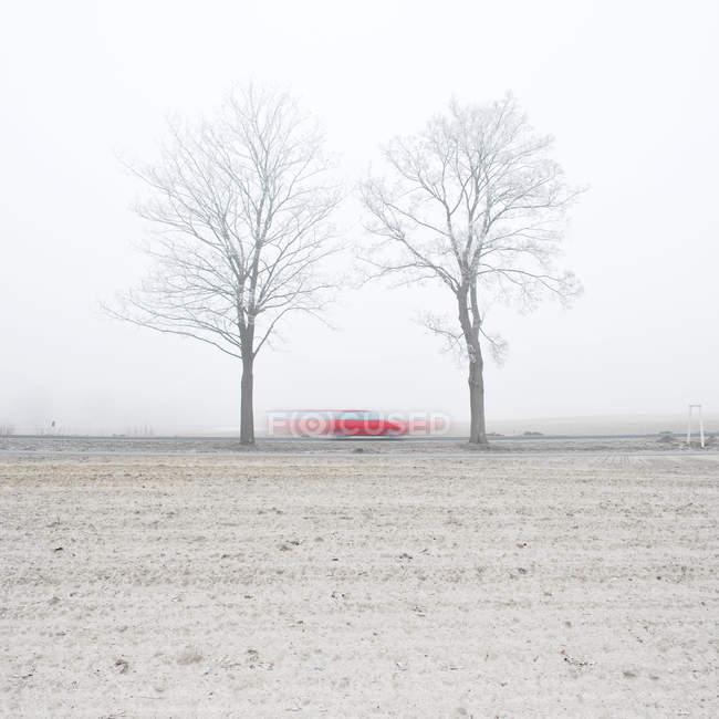 Размыты движение выстрел красный автомобиль ускорение через голые деревья — стоковое фото