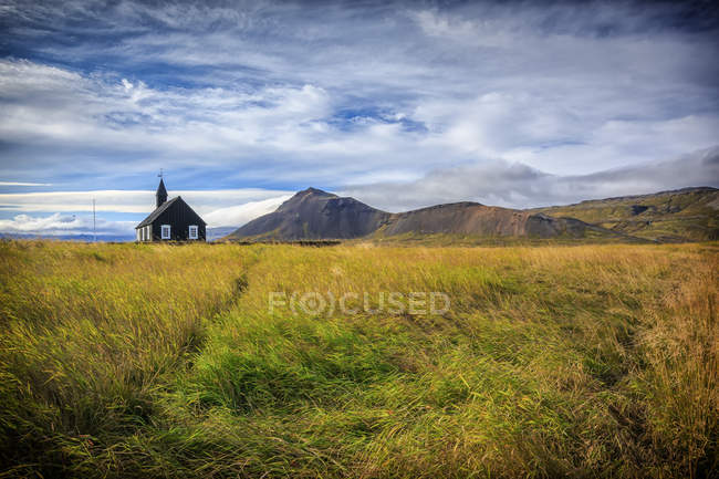Green grass meadow and house on background — Stock Photo
