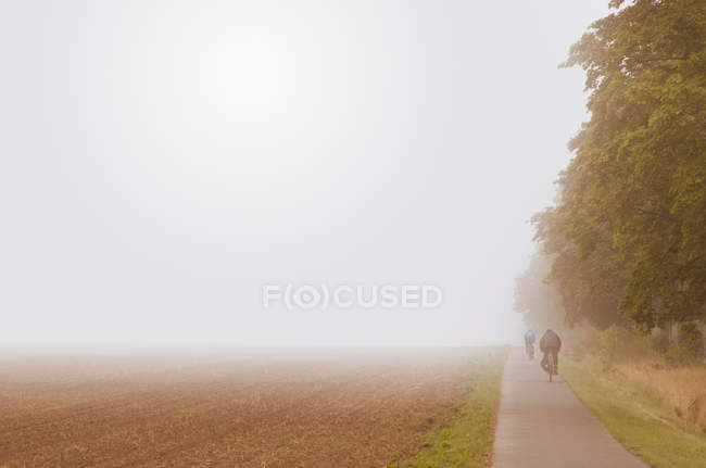 Rear view of people riding bicycles on pathway on foggy day in Germany — Stock Photo