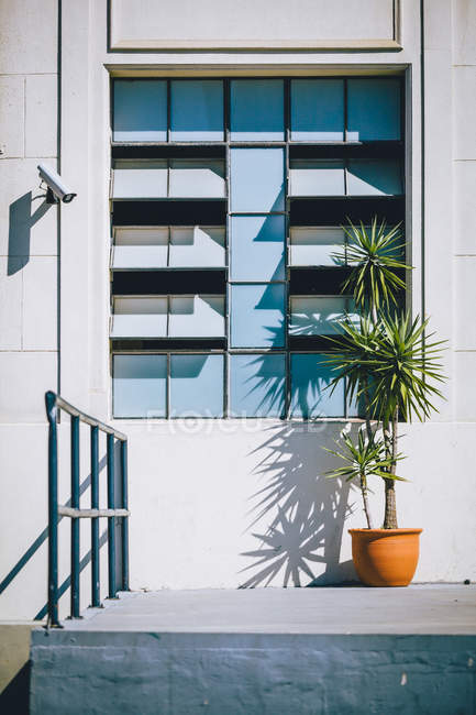 Exterior View of building in sunlight during daytime — Stock Photo