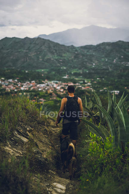 Rear view of man with dog in mountains, hiking trail — Stock Photo