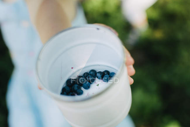 Close up of hand holding blueberries with soft focus — Stock Photo