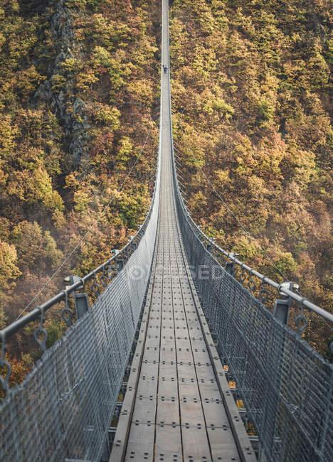 Passarela, ponte pênsil na floresta com árvores de outono — Fotografia de Stock
