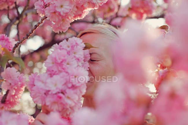 Жінка позує з Рожеве вишня цвітіння квіти весни — стокове фото