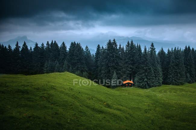 Árvores que cercam a cabana de madeira nos Alpes alemães sob nuvens escuras — Fotografia de Stock