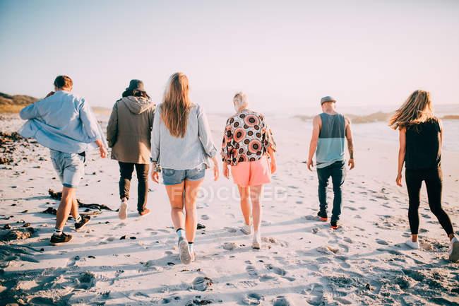 Задний вид портрет группы молодых людей, ходить на пляж — стоковое фото