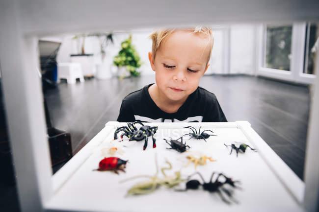 Indoeuropeo ragazzino che gioca con i giocattoli di ragno a casa — Foto stock