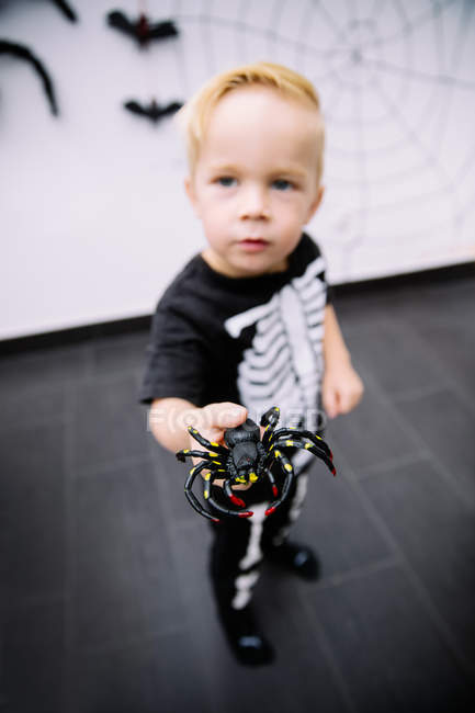 Caucasian little boy playing with spider toy — Stock Photo