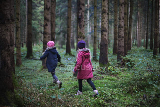 Rear view of two little girls wearing warm clothing in forest — Stock Photo