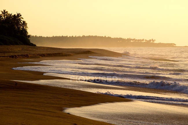 Scenic nature view of tropical sandy beach at sunset in Sri Lanka — стокове фото
