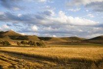 Сельские пейзажи в провинции Внутренняя Монголия, Китай — стоковое фото