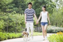 Chinese couple walking with cute beagle in park — Stock Photo