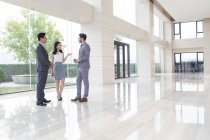 Businessmen and businesswoman talking in office building lobby — Stock Photo