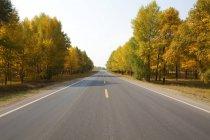 Живописный вид на дорогу, выложенную деревьями осенью во Внутренней Монголии, Китай — стоковое фото