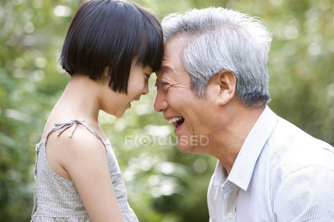 Китайский дедушка и внучка прижимают лбы в саду — стоковое фото