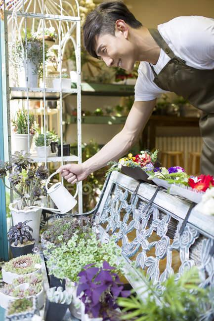 Мужчина поливает цветы в цветочном магазине — стоковое фото