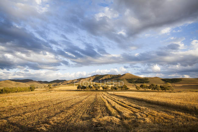 Landschaft in der chinesischen Provinz Innere Mongolei — Stockfoto
