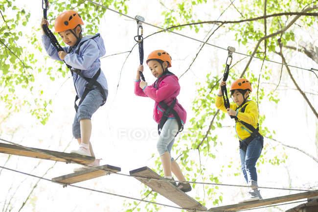 Crianças chinesas subindo em árvores no parque de aventura — Fotografia de Stock