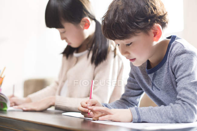 Asian siblings studying together at home — Stock Photo