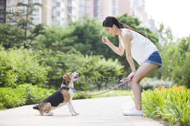 Femme chinoise jouant avec beagle mignon — Photo de stock
