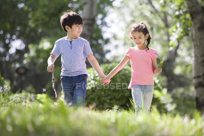 Chino y chica tomados de la mano caminando en el bosque - foto de stock