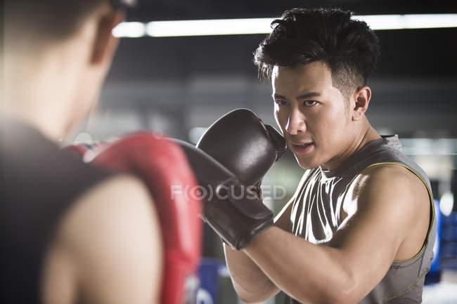 Asiático boxers lutando no ringue de boxe — Fotografia de Stock