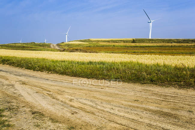 Wind turbines in grassland scenery in Hebei province, China — Stock Photo