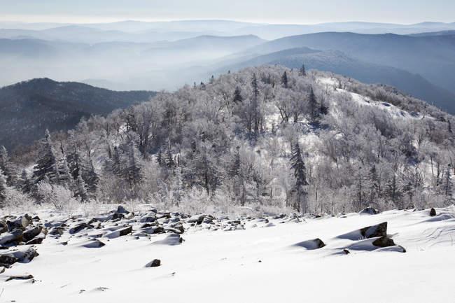 Горнолыжный склон на зимний курорт в Китай — стоковое фото