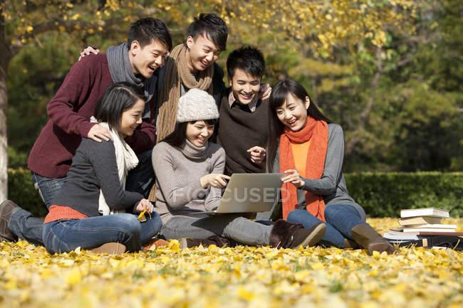 Estudiantes universitarios chinos usan computadora portátil en el parque del campus en otoño — Stock Photo