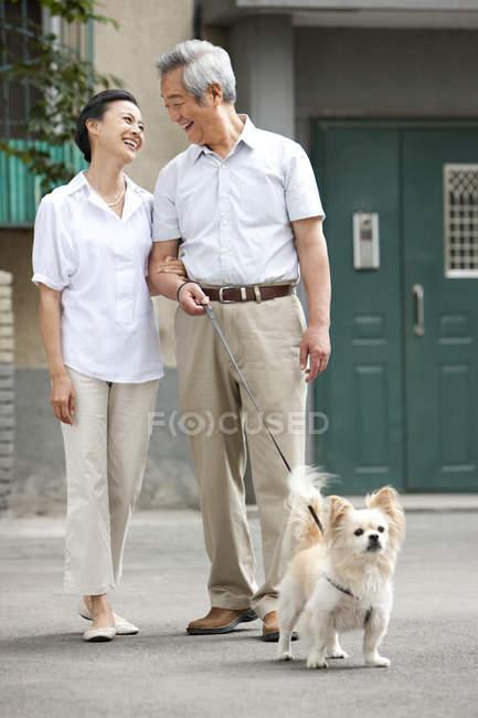 Couple chinois sénior marchant avec chien dans la rue — Photo de stock